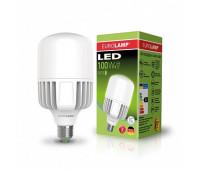 Высокомощная лампа EUROELECTRIC 100W E40 6500K Pro