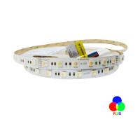 Светодиодная лента 5050-60-IP20-RGB/WW-12-24 RD0260AC-A 2700K RISHANG