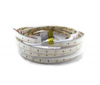 Светодиодная лента 2835-120-IP67-WW-10-24 RD30C0TC-B 2700K CRI80 RISHANG