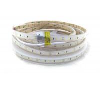 Светодиодная лента 2835-120-IP67-CWd-10-24 RD30C0TC-B 6500K CRI80 RISHANG
